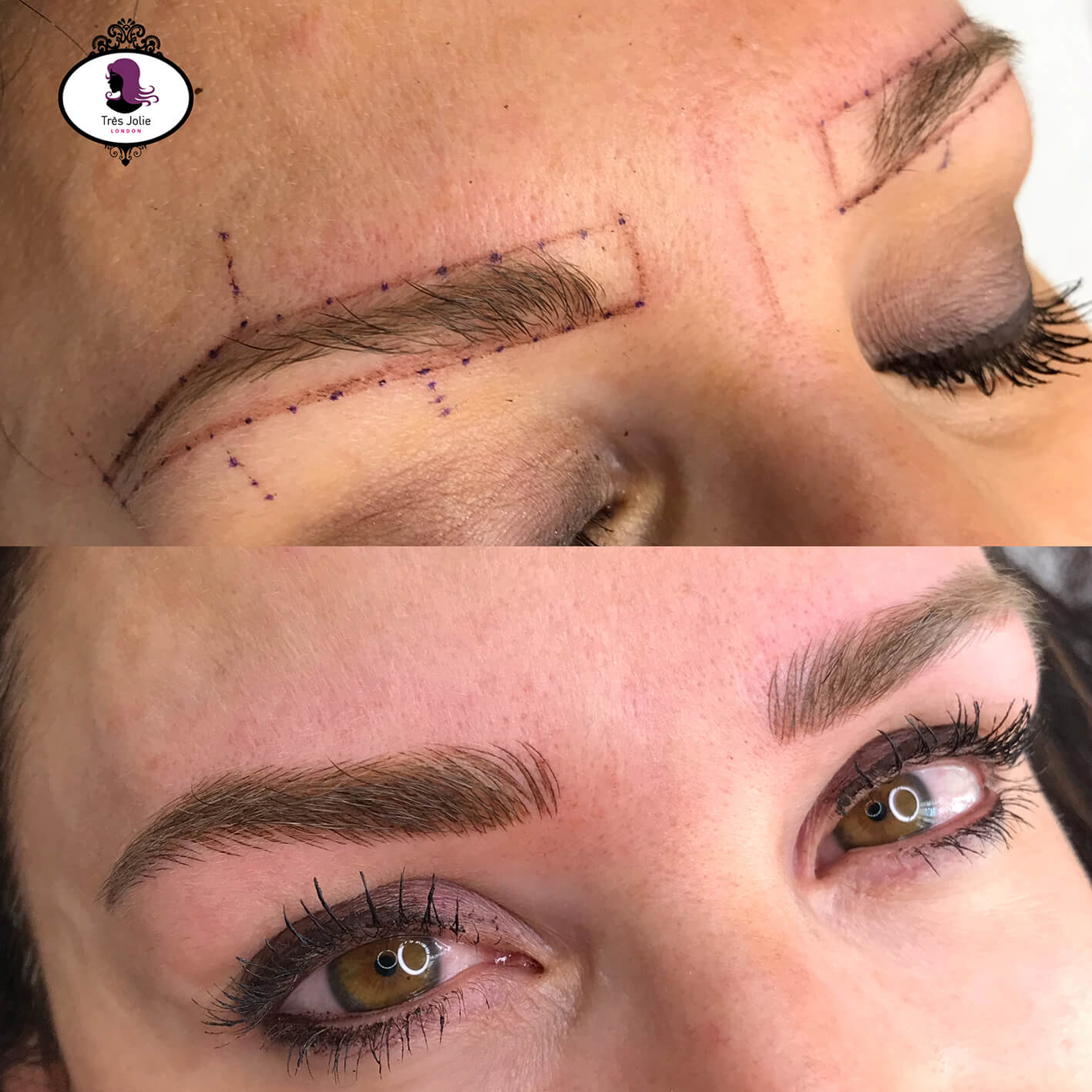 combo brows 5